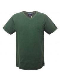 TS-41A 17 Double Ανδρικό t-shirt (μεγάλα μεγέθη) Χρώμα Πράσινο