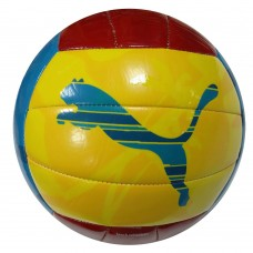 81886 01 Puma Beach Volleyball